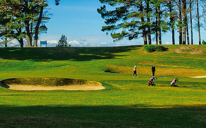 st clair golf club
